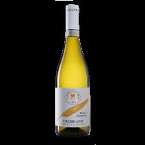 """6 bottiglie Azienda Agricola LA CASCINA DEL COLLE """"DUCAMINIMO"""" TREBBIANO D'ABRUZZO DOC da 0,75 litri"""